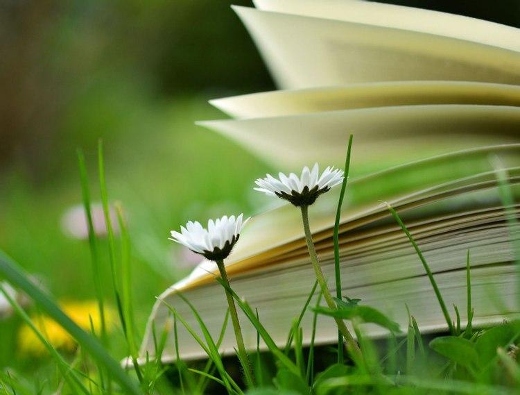 Pourquoi proposer des recueils de poèmes aux enfants...